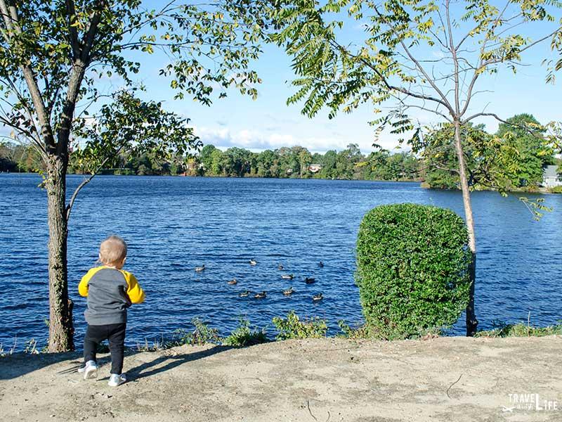 Delaware Attractions Silver Lake Park Dover