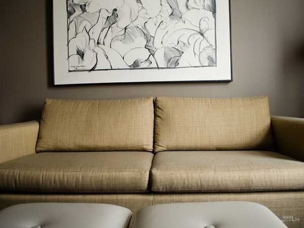 Hotels in Greensboro NC Proximity Hotel Inside Room Couch Image