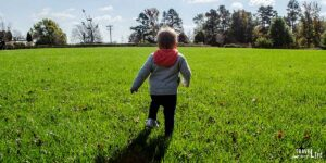 Surviving Travel with a Toddler Travel with Kids Guide