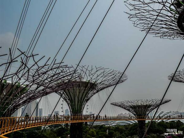 Places to Visit in Southeast Asia Singapore Gardens by the Bay Image