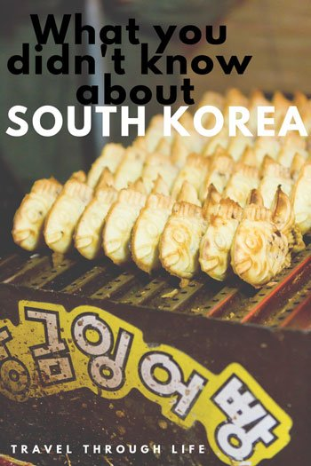 Things to know before you travel to South Korea Pinterest Image