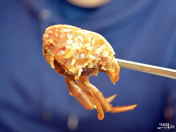 Travel to South Korea Things to Know Marinated Raw Crab Yeosu Image