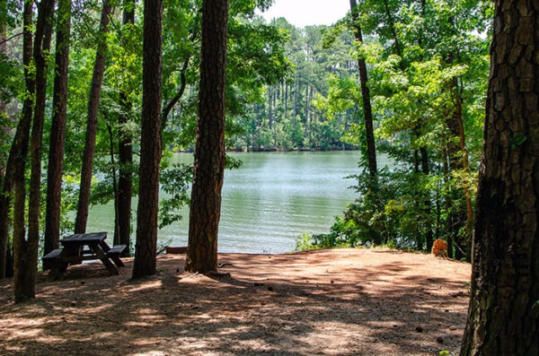Camping Spots at Hickory Knob are also close to the water.